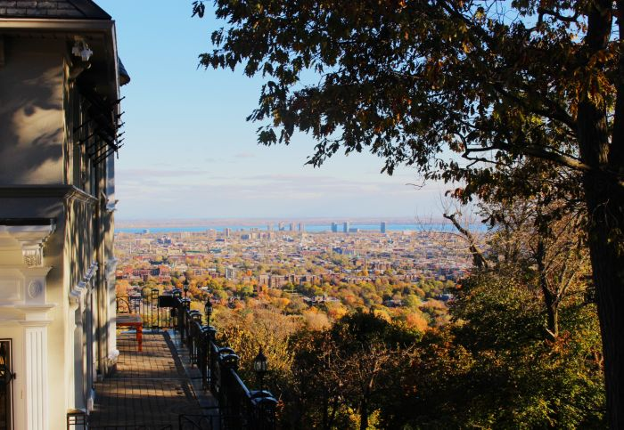 Buying a property: 5 reasons to live in Westmount